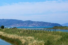 Oasi wwf di Orbetello